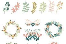 Flowers Ilustration