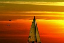Sailboats / We cannot direct the wind but we can adjust the sails.