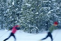 Cross-Country skiing / winter
