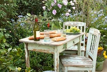 Outdoor beauty  / by Salvaging Grace