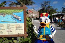 Disney Dream Vacation