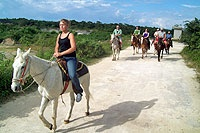 IWTTT - Horseback Riding Tours Cozumel Island Mexico / I promote for Sandos Resorts Vacation Club which offers a 5 night all inclusive stay for attending their timeshare promotion!  http://IWantToTravelTo.com