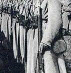 armia Hallera