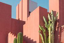 LA garden_Gal gaon project