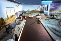 Exhibit Inspiration / A gallery of former exhibits at the Royal Tyrrell Museum of Palaeontology.
