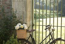Bicycle LOVE / by Fifi Flowers