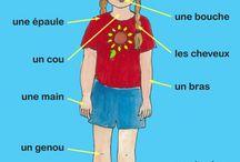 francese giaconelli