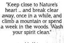 ~Wisdom~