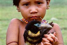 Endangered tribes