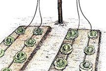 Jardins&horta