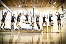 Sports Pictures / Team & Individual Sports Pictures