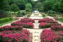 The Rose Garden / http://www.fwbg.org/gardens/#/the-rose-garden/