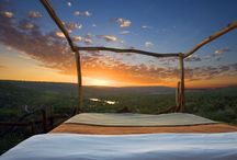 Luxurious moments in Africa / Five star service under a billion star sky... / by Explorations Africa