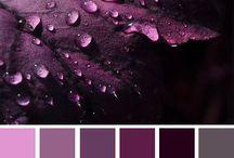 Παλέτες χρωμάτων