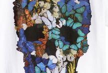 Borboletas & Butterfly