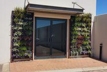 Vertical Garden and Green Roof