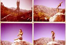 yogi / by Kate K