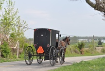 Quilts - Amish and their lifestyles / quilts of amish made