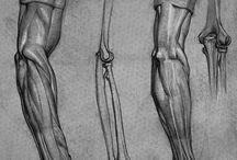 Wolverine arm