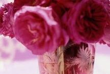pink / by Karen Wrai Karn