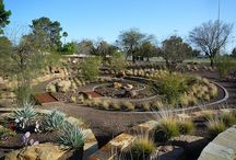 Water-Smart Landscaping / Creating Landscapes that are both beautiful and water-smart.