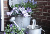 Containers & pots, and great ideas for your garden.