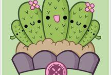 Cactus y plantas crasas!