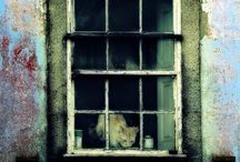 Abandonment: windows