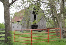 Barns and derelict buildings in Arkansas 2013  / No longer in use