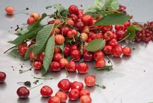 Früchte des Monats 07 | 15 / www.kirchhoff.net