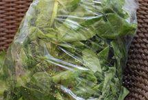 conservation légumes