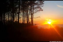Mielno / Morze Bałtyckie / Bałtyk / nadmorskie krajobrazy polskiego wybrzeża Bałtyku #Mielno #Mielenko #wybrzeże Bałtyckie #nadmorskie plaże #roślinność #krajobrazy #zachód słońca nad morzem #Bałtyk #Baltic Sea #wakacje nad Polskim morzem #klify #wydmy #plaże #pomorze #pomorskie #Polska #Poland #kutry rybackie #wioski rybackie