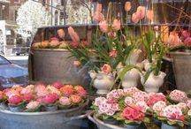 deco magasin de fleurs