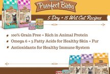 Paw Naturals - Cat Food / Some of the great naturals brands of cat food available at PawNaturals.com