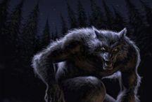 Tavle 15 werewolfs