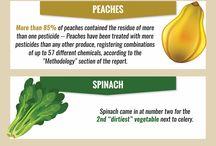 Food & Diet Infographics