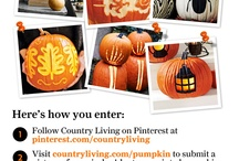 "Country Living's Halloween Pumpkin Contest / THIS CONTEST IS NOW CLOSED. Submit a photo of your jack-o'-lantern, painted pumpkin, or other creative gourd design at countryliving.com/pumpkin. Each day, we'll post your images on this board, where you can vote for your favorite design with a ""like."" The pinner whose image gets the most ""likes"" will win a $500 Michaels gift card!"