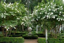 ビューティフル ガーデン