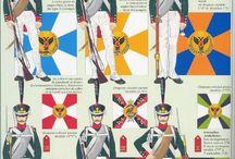 Napoleonic Armies