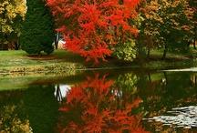 Autumn ( Høst)