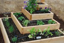 Vegetable garden design