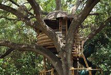Child's tree house