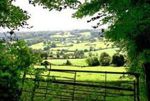 The Blackdown Hills / We are situated on the Blackdown Hills, an AONB on the Devon/Somerset border.