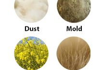 Allergy Remedies / Home remedies and natural methods for helping with allergies. Whether you're allergic to dust, dust mites, dander or pollen, you need to know how to get relief and prevent reactions at home.