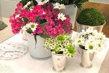 Plantas, Arranjos e Flores
