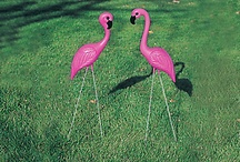 La Vie En Pink Flamingo / Pink Flamingos - The ultimate obsession and the best lawn ornament idea ever. / by Danica Jones