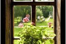 Przy oknie