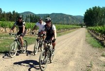 Things to Do in Colchagua Valley Chile / Activities and Things to Do in Colchagua Valley Chile.. bike tours, museums, hot springs, horseback riding, rodeos.