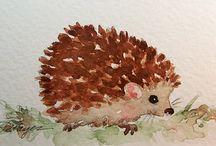 hedgehogs / by Cydney Perske