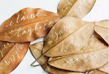 Joni's Fall wedding / by Jean Smith